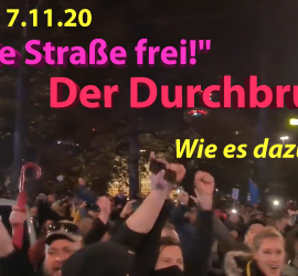 Demo, Leipzig, 7. November 2020, Querdenken
